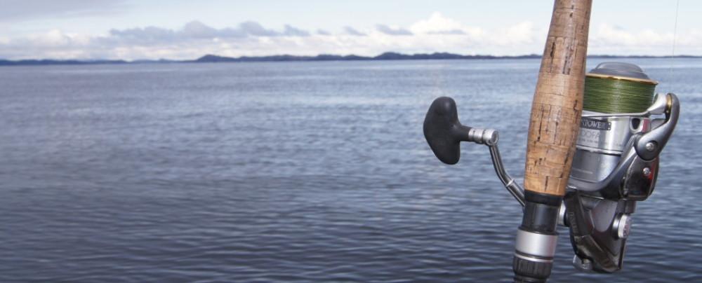 Willkommen bei raubfischer-des-nordens.de